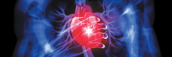 Signs of Heart Problems & Heart Disease