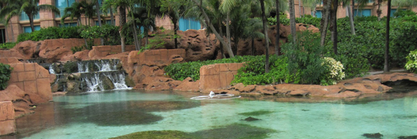 Marine Habitats at Atlantis