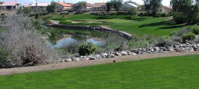 Coyote Lakes Golf Club in Surprise, Arizona