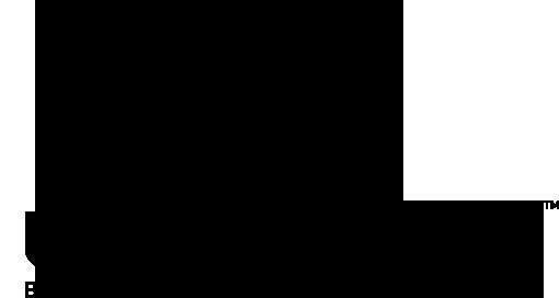 Wavefront Music Festival Logo