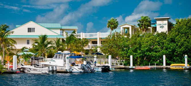 Dove Creek Lodge: The Jewel of Key Largo