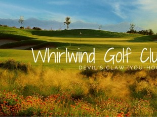 Whirlwind Golf Club: Devil's Claw (You-hook)