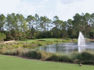 Tiburón's Gold Course Set To Host Two Professional Events, Reopen December 12