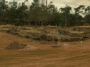 "Tiburón Golf Club's Black Course Undergoing ""Remastering"""