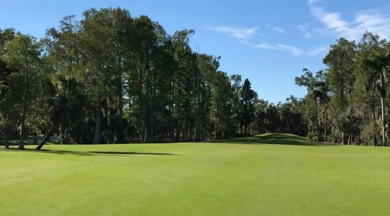 Wilderness Country Club: A Rare Tropical Paradise in the Heart of Naples