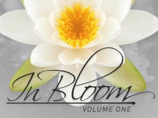 """Markus Schulz presents """"In Bloom Volume One"""" out now on Coldharbour Recordings"""